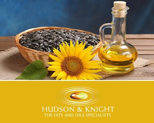Hudson & Knight